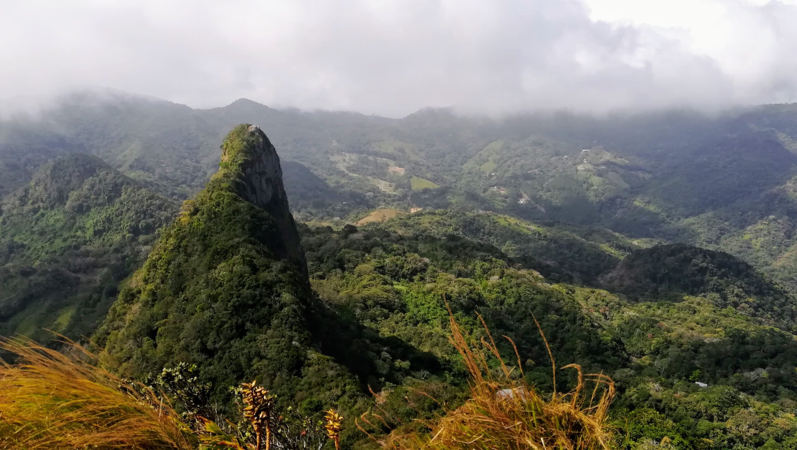 cerro picacho laguna san carlos