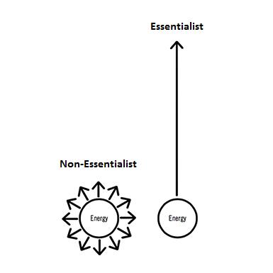 essentialism greg mckowan